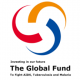 Existing Job Vacancies at Global Fund